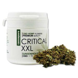 CBD-kvety-CRITICAL-XXL