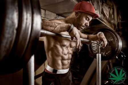 cbd pro sportovce – co potrebujete vedet o kanabidiolu