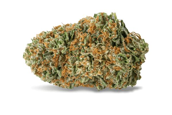 CBD-kvety-SOUR-TSUNAMI