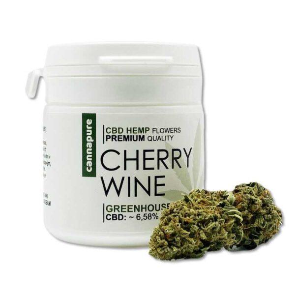 CBD-kvety-CHERRY-WINE-2